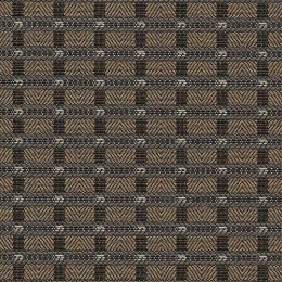 Dinardo_Fossil_150[1]