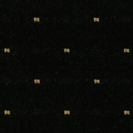Elation_BlackBeauty_150[1]