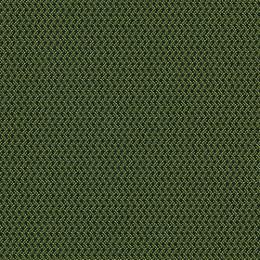 Sidestep_LawnGreen_150[1]