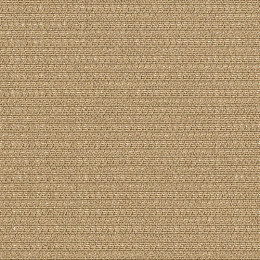 Swagger_Cottonseed_150[1]